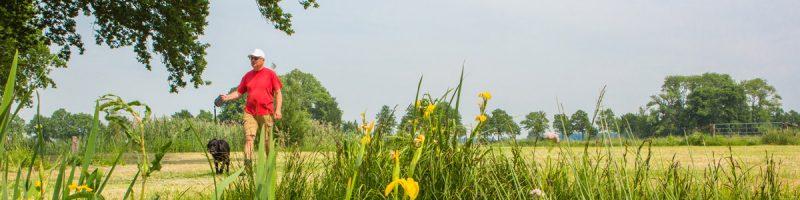 natuur - wil wijst de weg in je buurt vleuten de meern haarzuilens